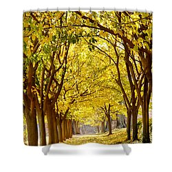 Golden Canopy Shower Curtain