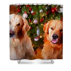 Golden Christmas Shower Curtain by Claire Bull