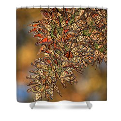 Golden Cluster Shower Curtain