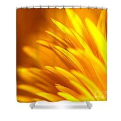 Golden Dahlia Shower Curtain