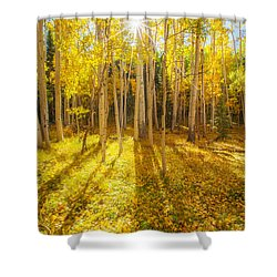 Golden Shower Curtain