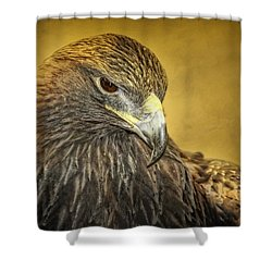Golden Eagle Portrait Shower Curtain