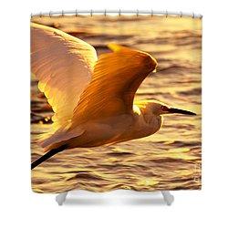 Golden Egret Bird Nature Fine Photography Yellow Orange Print  Shower Curtain by Jerry Cowart