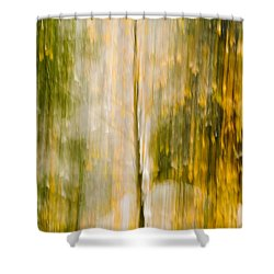 Golden Falls  Shower Curtain