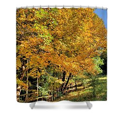 Shower Curtain featuring the photograph Golden Fenceline by Gordon Elwell