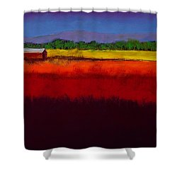 Golden Field Shower Curtain by David Patterson