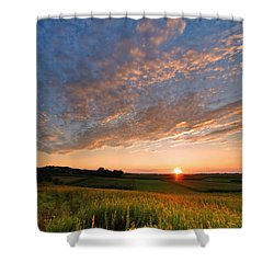 Golden Fields Shower Curtain by Davorin Mance