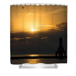 Golden Flight Shower Curtain