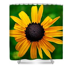 Golden Flower Shower Curtain by Matt Harang