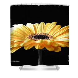 Golden Gerbera Daisy No 2 Shower Curtain