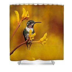 Shower Curtain featuring the photograph Golden Glow by Blair Wainman