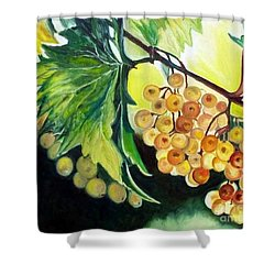 Shower Curtain featuring the painting Golden Grapes by Julie Brugh Riffey