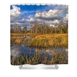 Golden Grasses Shower Curtain by Debra and Dave Vanderlaan