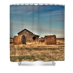 Golden Hay Shower Curtain