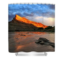 Shower Curtain featuring the photograph Golden Highlights by Ronda Kimbrow