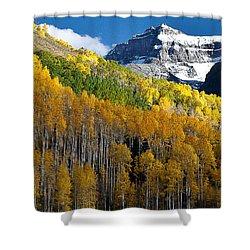 Golden Hillside Shower Curtain by Steven Reed