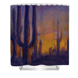 Golden Hours 2 Shower Curtain