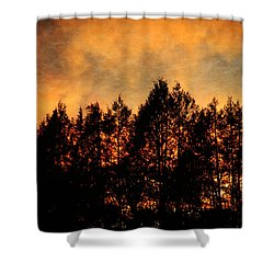 Golden Hours Shower Curtain