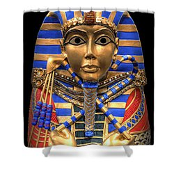 Golden Inner Sarcophagus Of A Pharaoh Shower Curtain by Daniel Hagerman
