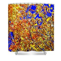 Golden Shower Curtain by Kathleen Struckle