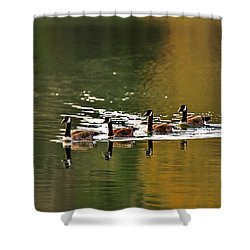 Golden Lake Shower Curtain by Menachem Ganon