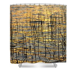 Golden Lake Ripples Shower Curtain by James BO  Insogna