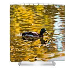 Golden   Leif Sohlman Shower Curtain