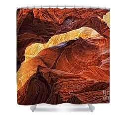 Golden Light Shower Curtain by Claudia Kuhn