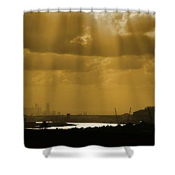 Golden Light Shower Curtain by Linda Unger