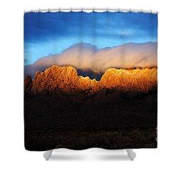 Golden Light Shower Curtain by Vivian Christopher