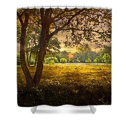 Golden Pastures Shower Curtain by Debra and Dave Vanderlaan