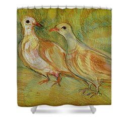 Golden Pigeons Shower Curtain