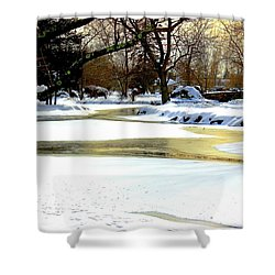 Golden Pond Reflections Shower Curtain