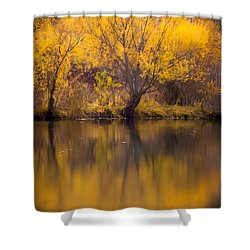 Golden Pond Shower Curtain by Steven Milner