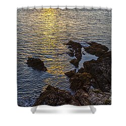 Golden Reflection Shower Curtain by Brian Roscorla