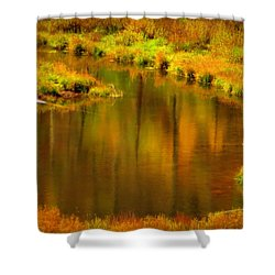 Golden Reflections Shower Curtain by Karen Shackles