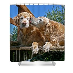 Golden Retriever Dogs The Kiss Shower Curtain