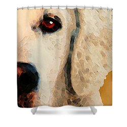 Shower Curtain featuring the painting Golden Retriever Half Face By Sharon Cummings by Sharon Cummings