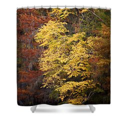 Golden Rust Shower Curtain by Lana Trussell