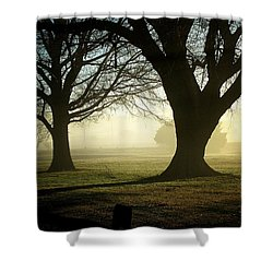 Shower Curtain featuring the photograph Golden Sunrise by Greg Simmons