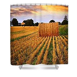 Golden Sunset Over Farm Field In Ontario Shower Curtain by Elena Elisseeva