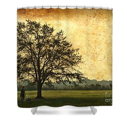 Shower Curtain featuring the photograph Golden Tree by Phil Mancuso