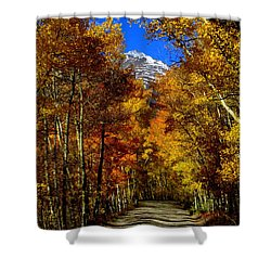 Shower Curtain featuring the photograph Golden Tunnel by Karen Shackles