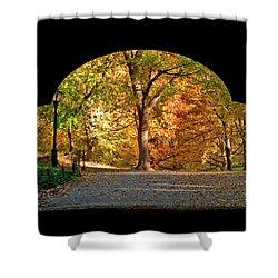 Golden Underpass Shower Curtain