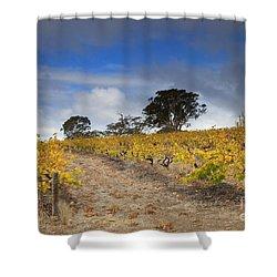 Golden Vines Shower Curtain by Mike  Dawson