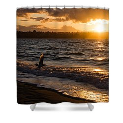Golden Wings Golden Water Shower Curtain