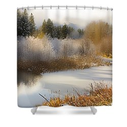 Golden Winter Shower Curtain by Sonya Lang