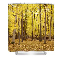 Golden Woods Shower Curtain