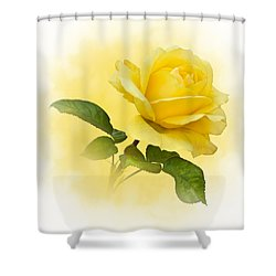Golden Yellow Rose Shower Curtain by Jane McIlroy