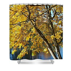 Shower Curtain featuring the photograph Golden Zen by Chalet Roome-Rigdon